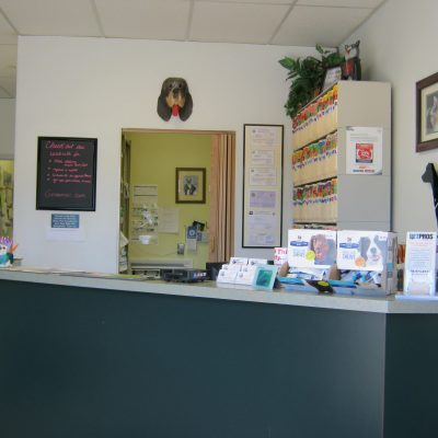 Reception counter, Goshen