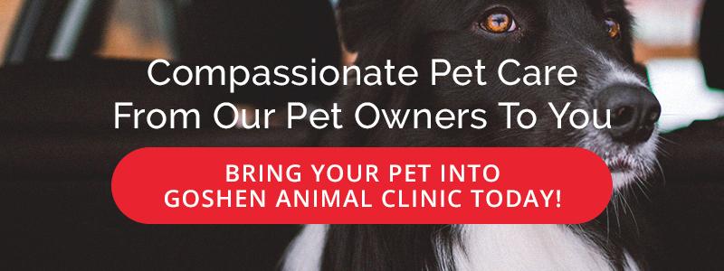 Compassionate Pet Care